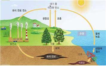 지구 네트워크의 탄소 순환 체계는 매우 안정된 복원력을 가지고 있지만, 최근 100년래 인간의 활동에 의해 교란되고 있다. (중학교 과학 교과서, 지학사)