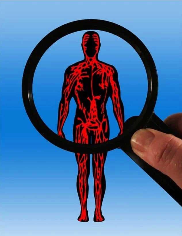저성장시대에 어떻게 메타볼리즘을 형성하고 다이내믹한 시스템을 짤 수 있는가? https://pixabay.com/illustrations/body-blood-circulation-aterien-75303/