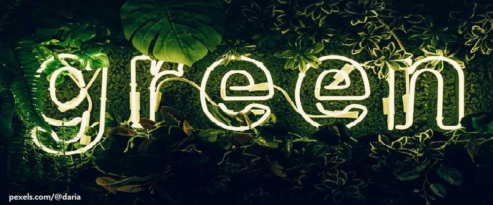 '위장환경주의' 주의(注意) -『위장환경주의』를 읽고