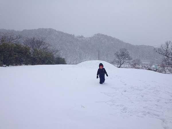 눈 내린 밤만디(2014.2.12.) by 김진희