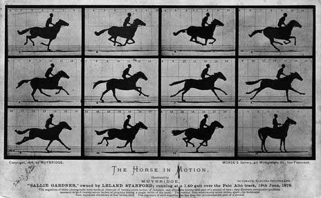 에드워드 마이브리지(Eadweard Muybridge), 〈달리는 말〉, 1878, 흰자판 사진, 미국 의회도서관 소장. 출처: https://www.loc.gov/
