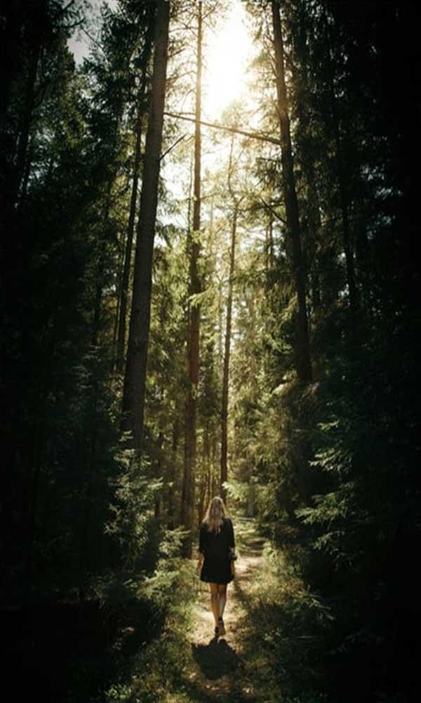 숲과 마찬가지로 나도 지구에 잠시 머물다 가는 손님입니다.  by Geran de Klerk 출처 :https://unsplash.com/photos/Kcxv7Gz7wmw